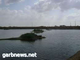 """الضنك تهدد أهالي صبيا بسبب بحيرة الصرف الصحي""""و البعوض ومخاوف.."""