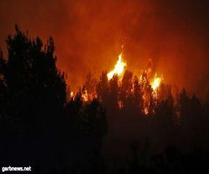 حريق ضخم في منطقة غور الأردن