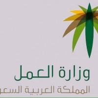توفير نحو 20 ألف وظيفة للسعوديين بعد سعودة نشاط بيع وصيانة أجهزة الجوالات .