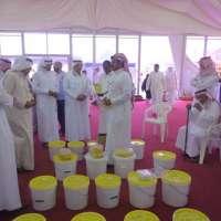 مزاد علني للعسل بمهرجان الباحة